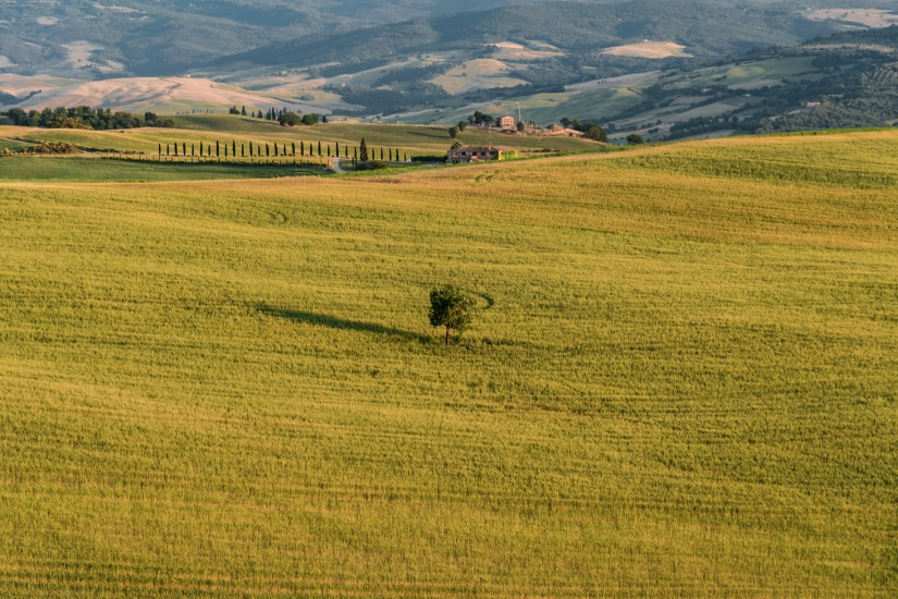 Extraordinary panorama of the Siena countryside, in the valley of the valley